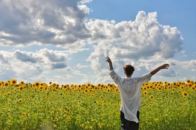 ひまわり畑で開放感を感じる女性