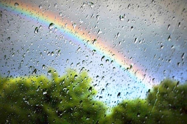湿気・カビ対策は梅雨の時期だけでいいの?
